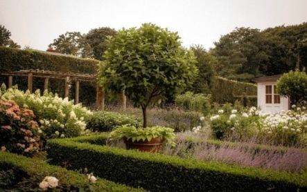 Ina Garten's Garden